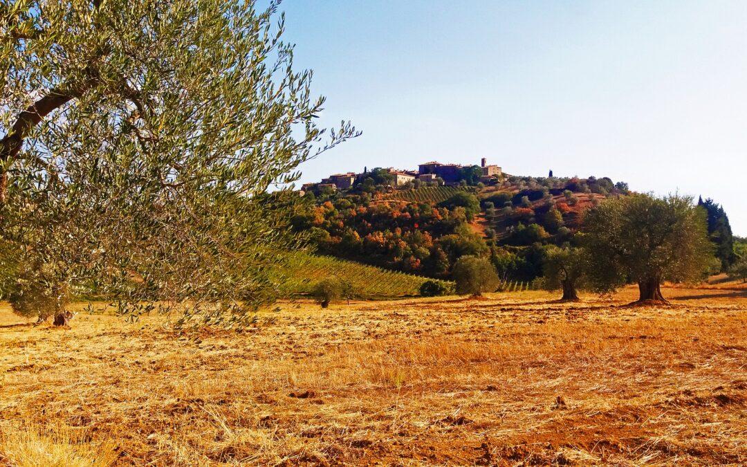 Elezioni in Toscana.  C'è ancora vita costituzionale da salvare